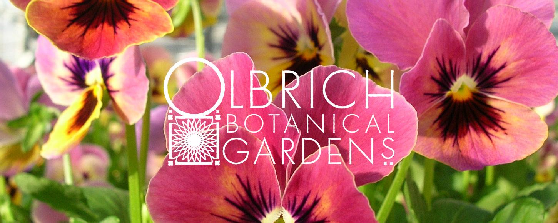 Olbrich Botanical Gardens Brand Design